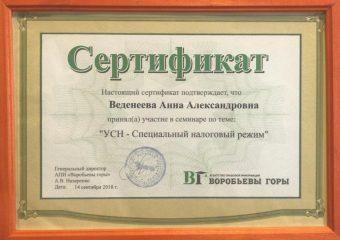 """Сертификат: """"УСН - специальный налоговый режим"""""""